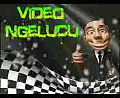 VIDEO-LUCU-MONYET-JAIL-BIKIN-HEWAN-TERKEJUT-VIDEO-LUCU-BANGET-BIKIN-NGAKAK-2014.3gp