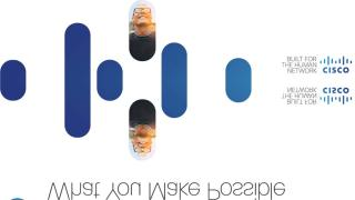 mpls_vpn.pdf